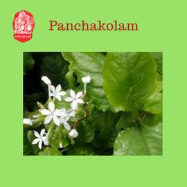 panchakolam