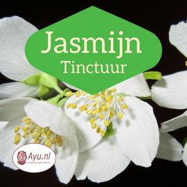 Jasmijn tinctuur